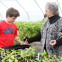 Lauren Wood | Buy at photos.djournal.com<br /> Student Carter Cleveland helps Jane McVay pack up plants before she purchases them at the greenhouse Wednesday afternoon at Pontotoc Middle School.