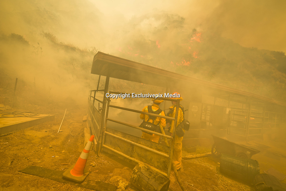 June 20, 2016 - Duarte, California, U.S. - Los Angeles County firefighters work to extinguish flames burning a horse stable off Fish Canyon Rd Monday afternoon as the Fish Fire burned over 1400 acres. ...The Fish Fire burns above Duarte and Los Angeles County. The Reservoir Fire also started nearby during record heat in the Southwest. The fire was 1,400 acres at 2:50pm. <br /> &copy;Exclusivepix Media
