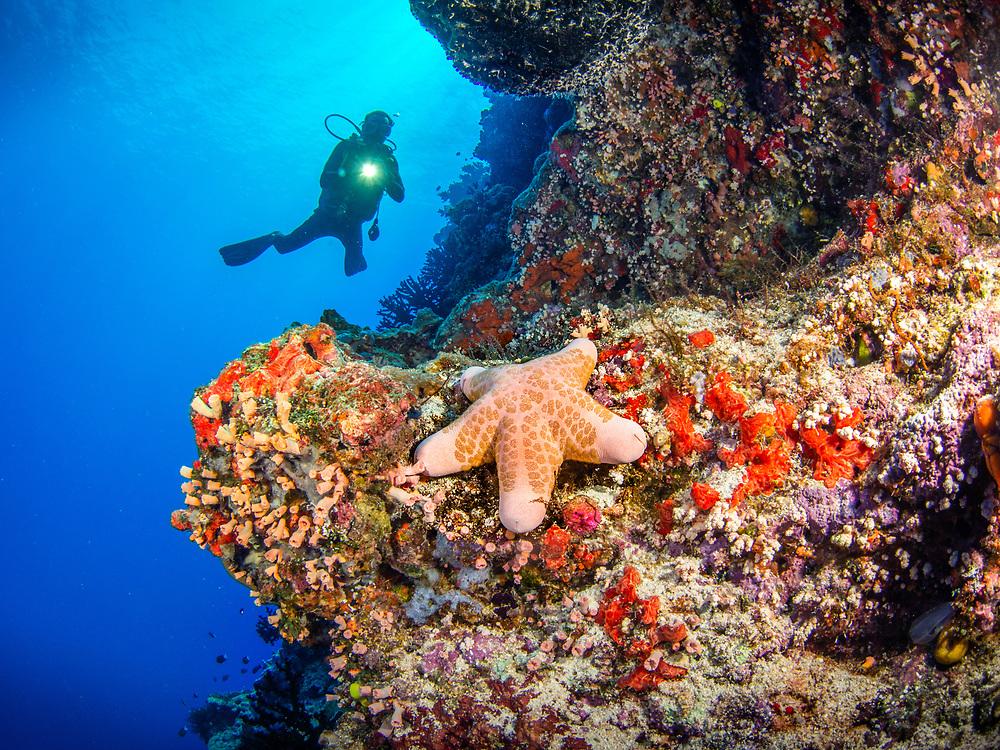 Tufi Gabriella's Fish Point, Papua New Guinea