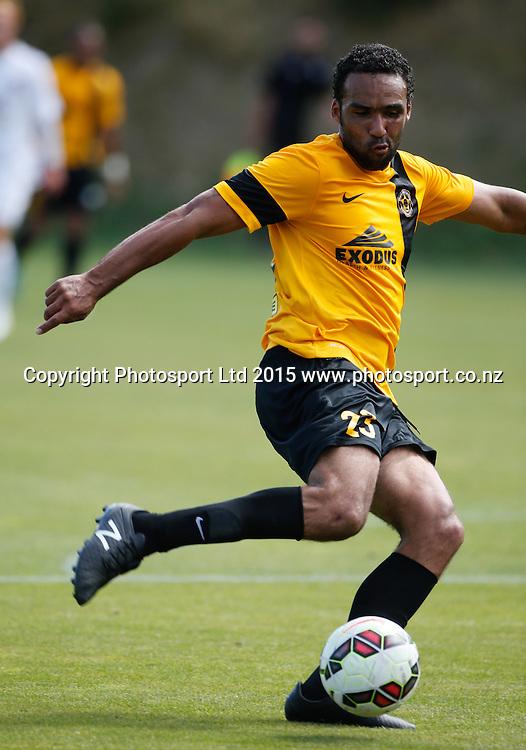 Wellington's Paul Ifill. ASB Premiership Football - Wellington v Canterbury, 08 February 2015, , Wellington, New Zealand. Photo: John Cowpland / www.photosport.co.nz