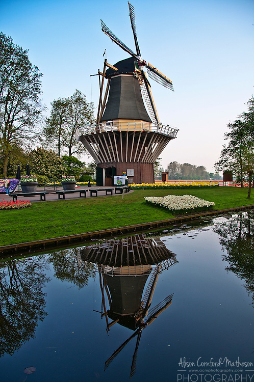Windmill at Keukenhof Spring Tulip garden in Lisse, The Netherlands.