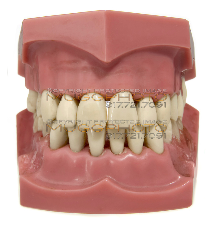 fake teeth set