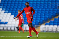 CARDIFF, WALES - Thursday, August 9, 2018: FC Midtjylland's Bubacarr Sanneh during the UEFA Europa League Third Qualifying Round 1st Leg match between The New Saints FC and FC Midtjylland at Cardiff City Stadium. (Pic by David Rawcliffe/Propaganda)