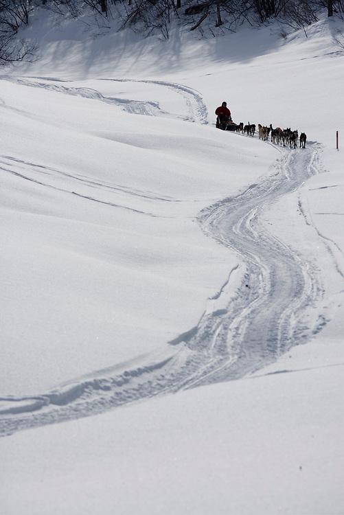 USA, Alaska, Anvik, Musher and dog team race down snow-covered slough toward Yukon River during 2005 Iditarod sled dog race on winter day