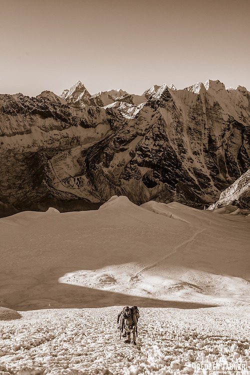 A party of climbers start the ascent of the main Ice Wall on Island Peak. Makalu can be seen on the horizon.
