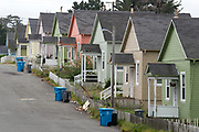 Row of houses in the company town of Samoa, California.