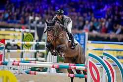 Schoonbroodt-De Azevedo Celine, BEL, Caprice D'Elle<br /> Jumping Mechelen 2019<br /> © Hippo Foto - Dirk Caremans<br />  27/12/2019