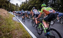 07.07.2019, Wels, AUT, Ö-Tour, Österreich Radrundfahrt, 1. Etappe, von Grieskirchen nach Freistadt (138,8 km), im Bild Berganstieg Peloton // during 1st stage from Grieskirchen to Freistadt (138,8 km) of the 2019 Tour of Austria. Wels, Austria on 2019/07/07. EXPA Pictures © 2019, PhotoCredit: EXPA/ JFK