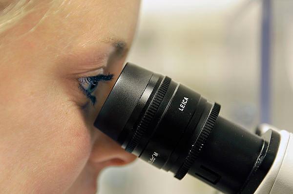 Nederland, Nijmegen, 15-8-2012Een onderzoeker, onderzoekster, laborant, laborante achter de microscoop in een medisch laboratorium.Foto: Flip Franssen