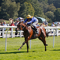 Outback Traveller and William Buick winning the 2.20 race