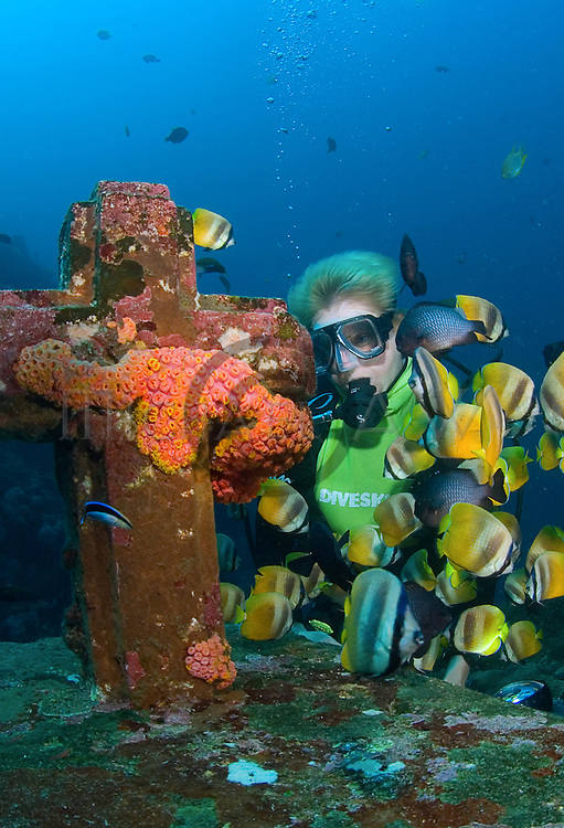 (Multiple values)coral reef Philippines, Aniloa, reef