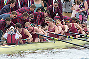 Henley on Thames. United Kingdom.  Sunday,  Final, supporters of Oxford Brookes University, rush to congratulate and celebrate with the crew after they win the  Temple Challenge Cup, 2016 Henley Royal Regatta, Henley Reach.   <br /> <br /> Sunday  03/07/2016<br /> <br /> © Peter SPURRIER<br /> <br /> NIKON CORPORATION  NIKON D500  f9  1/1250sec  750mm  14.4MB