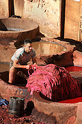 Detail of worker in vat, Chouara tannery, Fez, Morocco, pictured on February 22, 2009 in the morning. A meeting of light, colors, material, animal and human life as a young boy learns the tanning tradition. The Chouara tannery is the largest of the four ancient tanneries in the Medina of Fez where the traditional work of the tanners has remained unchanged since the 14th century. It is composed of numerous dried-earth pits where raw skins are treated, pounded, scraped and dyed. Tanners work in vats filled with various coloured liquid dyes derived from plant sources. Colours change every two weeks, poppy flower for red, mint for green, indigo for blue, chedar tree for brown and saffron for yellow. Fez, Morocco's second largest city, and one of the four imperial cities, was founded in 789 by Idris I on the banks of the River Fez. The oldest university in the world is here and the city is still the Moroccan cultural and spiritual centre. Fez has three sectors: the oldest part, the walled city of Fes-el-Bali, houses Morocco's largest medina and is a UNESCO World Heritage Site;  Fes-el-Jedid was founded in 1244 as a new capital by the Merenid dynasty, and contains the Mellah, or Jewish quarter; Ville Nouvelle was built by the French who took over most of Morocco in 1912 and transferred the capital to Rabat. Picture by Manuel Cohen.