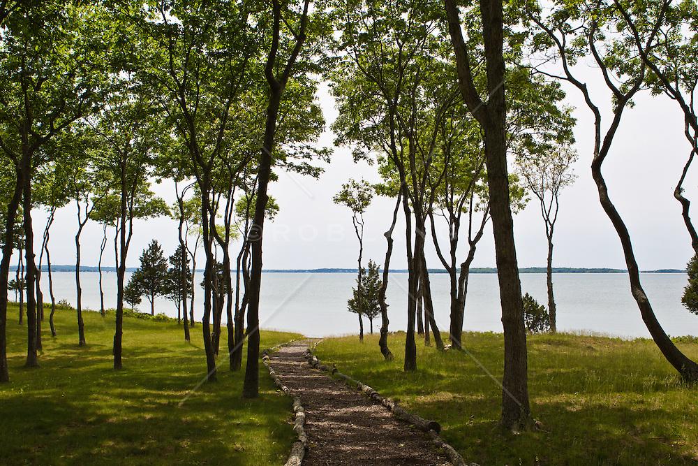 walkway through trees to the bay in East Hampton, NY
