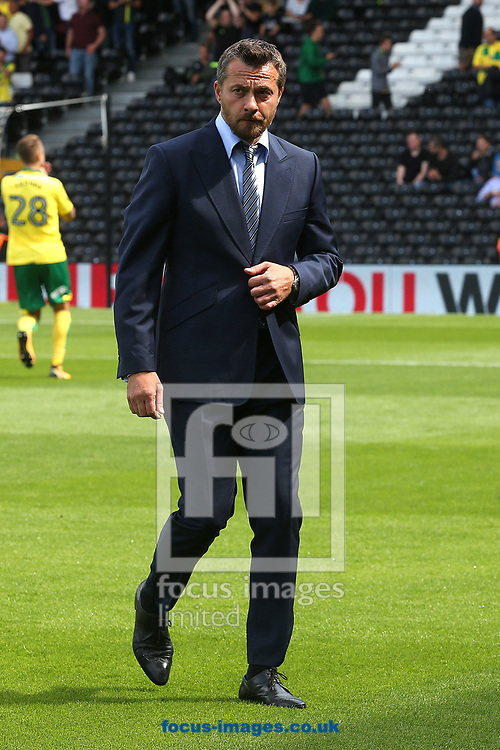 Fulham Manager Slavisa Jokanovic before the Sky Bet Championship match at Craven Cottage, London<br /> Picture by Paul Chesterton/Focus Images Ltd +44 7904 640267<br /> 05/08/2017