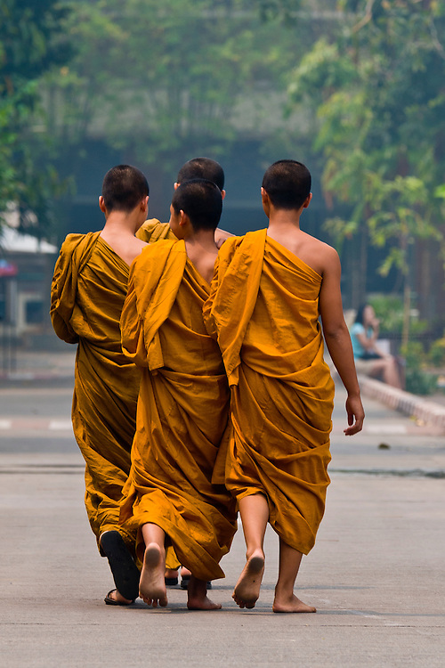Buddhist monks walking, Wat Chedi Luang (Buddhist temple), Chiang Mai, Northern Thailand