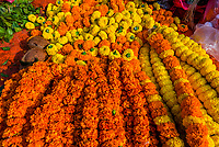 A street vendor selling Marigold garlands, significant in Hinduism, Durbar Square, Kathmandu, Nepal.