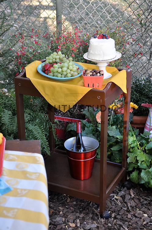 Retro outdoor party, dessert cart