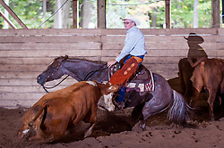 September 23, 2017 - Minshall Farm Cutting 5, held at Minshall Farms, Hillsburgh Ontario. The event was put on by the Ontario Cutting Horse Association. Riding in the $25,000 novice Horse Non-Pro Class is Greg Wilde on Bobby Cee Lena owned by the rider.