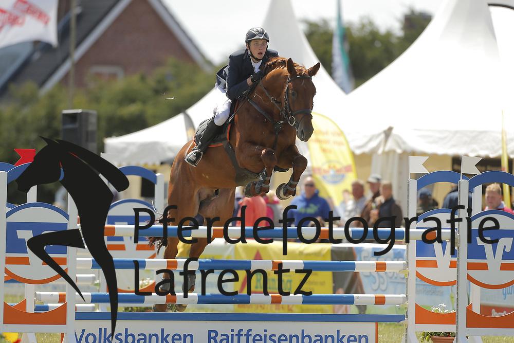 Flinzer, Felix, Costa-Blue<br /> Fehmarn - Pferdefestival 2014<br /> Nationales Springen<br /> © www.sportfotos-lafrentz.de/ Stefan Lafrentz