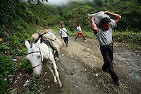 A man carries a bag on his shoulders on a remote road in a coca-growing region of the southern Colombian state of Nariño, on Saturday, June 23, 2007. (Photo/Scott Dalton)