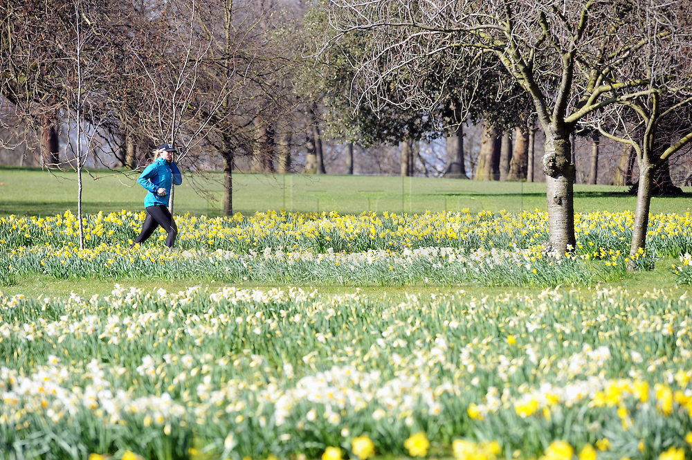 © Licensed to London News Pictures. 14/03/2016. Visitors to Greenwich Park enjoy the spring sunshine. (Byline:Grant Falvey/LNP)