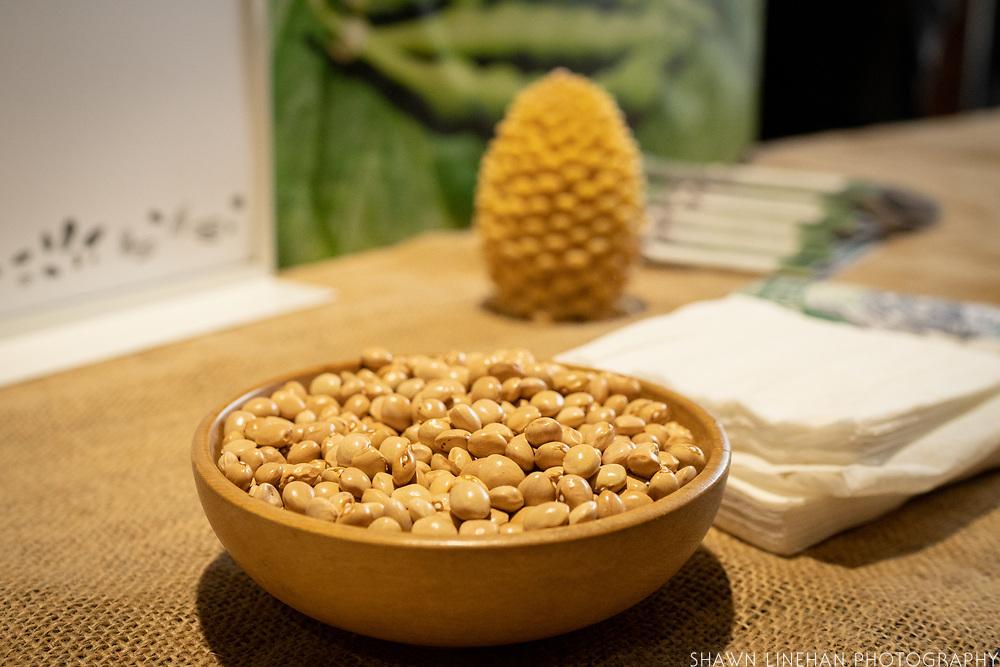 Bean (Pole), Phaseolus vulgaris<br /> Showcase: 'Aunt Ada's Italian' Pole Bean<br /> Breeder: Lia Babitch, Turtle Tree Biodynamic Seed Chef: Sam Smith, Tusk