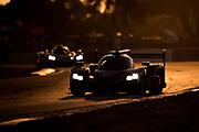 March 16-18, 2017: Mobil 1 12 Hours of Sebring. 10 Wayne Taylor Racing, DPi, Ricky Taylor, Jordan Taylor, Alexander Lynn, 5 Mustang Sampling Racing, DPi, Joao Barbosa, Filipe Albuquerque, Christian Fittipaldi