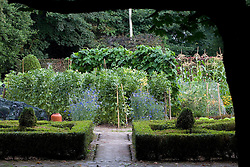The vegetable garden at Ballymaloe Cookery school. Clipped standard bay tree, sweetcorn, golden hop arbour and box topiary