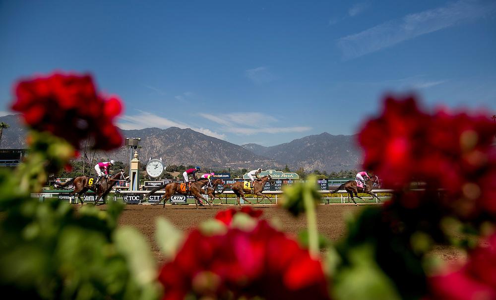 September 26 2015: Horses race at Santa Anita Park on Opening Day at Santa Anita Park, Arcadia CA. Alex Evers/ESW/CSM