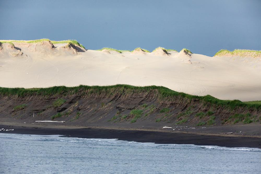 Sunlight illuminates the dunes along the coast of St. Paul Island in Southwest Alaska. Summer. Morning.