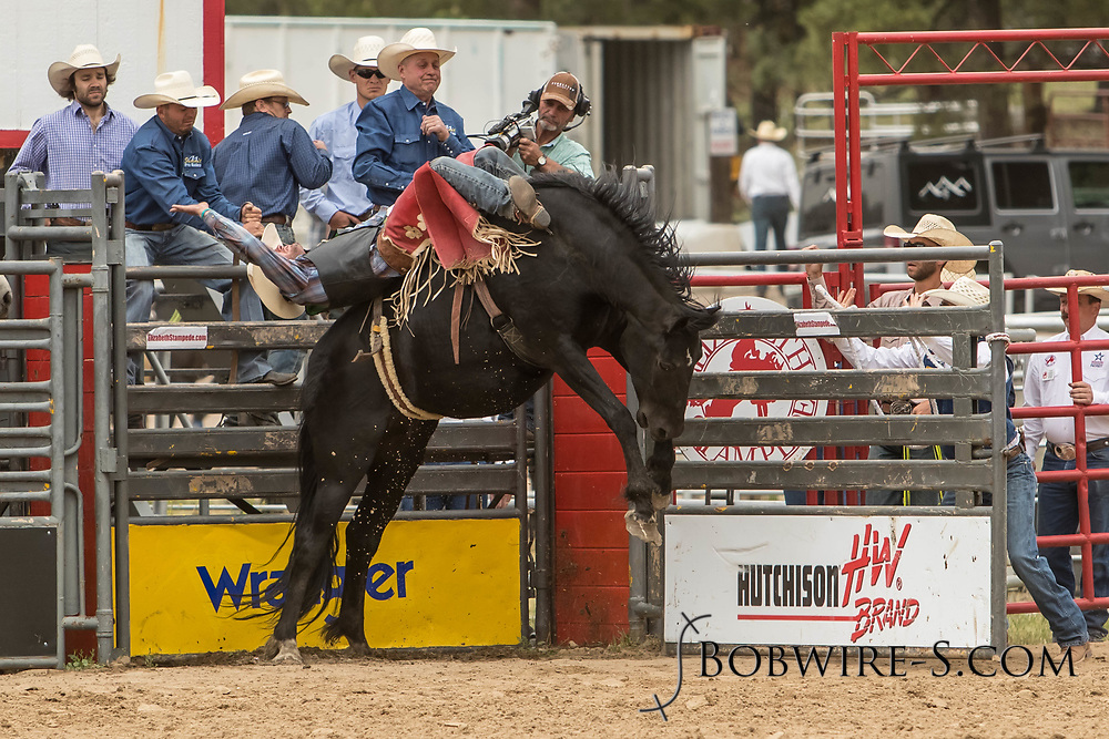 Bareback rider Shane O'Connell rides Summit Pro Rodeo's Jabberwocky during the third performance of the Elizabeth Stampede on Sunday, June 3, 2018.