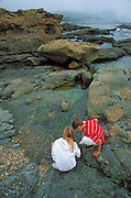 Kids (age 8 & 12)  exploring a tidepool at Weston Beach, Point Lobos State Reserve, California