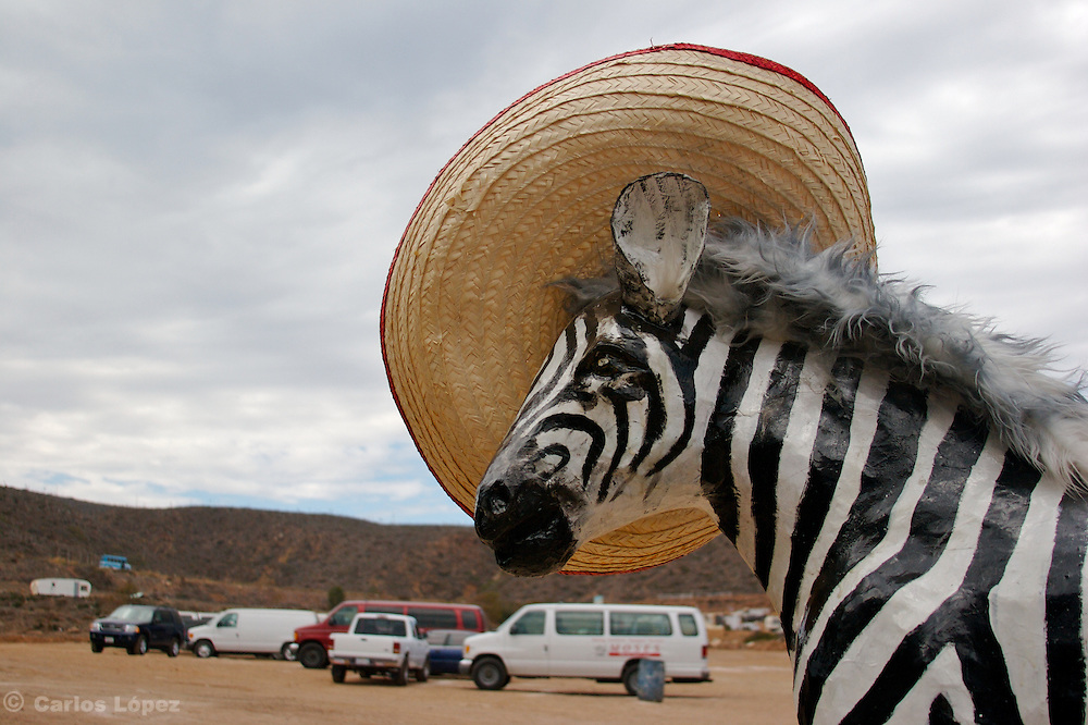 A STATUE OF A ZEBRA WITH HAT