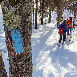 Trail blaze on the Hanson Trail in winter. Green Mountain. Effingham, New Hampshire.