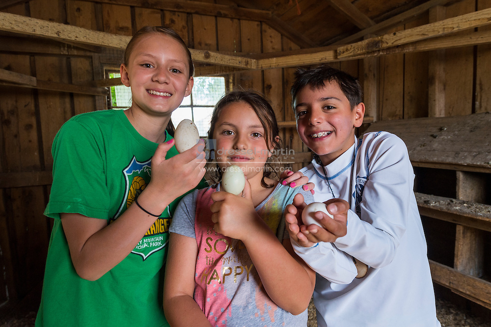 chatfield farm camp