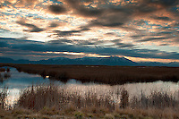 Sunrise at Bear River Bird Refuge in northern Utah.