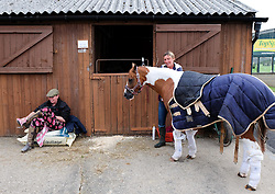 © Licensed to London News Pictures.14/07/15<br /> Harrogate, UK. <br /> <br /> A woman grooms her horse on the opening day of the Great Yorkshire Show.  <br /> <br /> England's premier agricultural show opened it's gates today for the start of three days of showcasing the best in British farming and the countryside.<br /> <br /> The event, which attracts over 130,000 visitors each year displays the cream of the country's livestock and offers numerous displays and events giving the chance for visitors to see many different countryside activities.<br /> <br /> Photo credit : Ian Forsyth/LNP