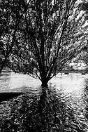 France. Paris. 1st district. flooding . the  the Seine  river and the quay du Louvre
