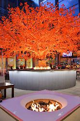 Sushi Samba outside bar at the OMEGA 100 days to Rio Olympics VIP Dinner at Sushi Samba, Heron Tower, 110 Bishopsgate, City of London on 27th April 2016.