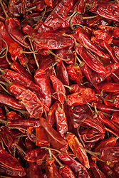 North America, Mexico, Oaxaca Province, Oaxaca, peppers for sale in market