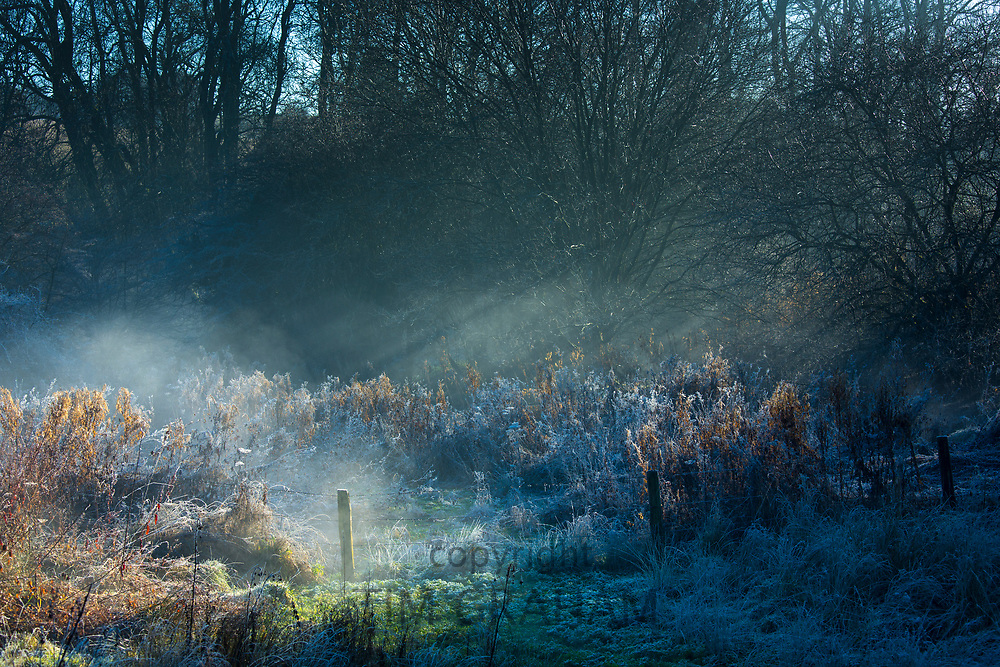 Sun's rays on morning mist - typical winter misty and frosty landscape scene in Swinbrook, the Cotswolds, England, UK