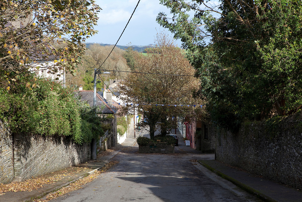 Main street, Castletownshend, Co. Cork, Ireland, with the Two Trees in the middle of the road.
