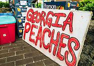 Georgia - Tucker