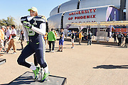 Feb 1, 2015; Glendale, AZ, USA; Seattle Seahawks fan Julia Strand poses for a photo before Super Bowl XLIX against the New England Patriots at University of Phoenix Stadium. The Patriots defeated the Seahawks 28-24.