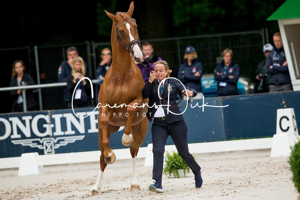 Werth Isabell, GER, Bella Rose<br /> EC Rotterdam 2019<br /> © Hippo Foto - Sharon Vandeput<br /> 18/08/19