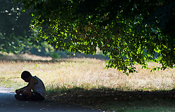 ©Licensed to London News Pictures 12/08/2020             Greenwich, UK. A young boy sitting in the shade. The hot heatwave weather continues in London and the South East today with people out and about in Greenwich park,  Greenwich, London. Photo credit: Grant Falvey/LNP