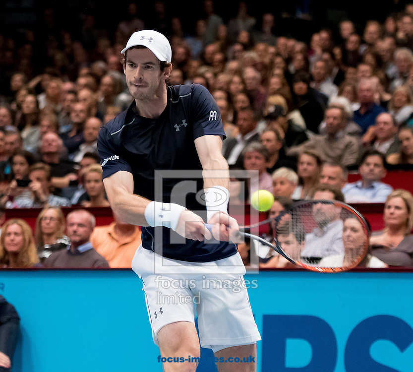Andy Murray during the final of the Erste Bank Open at Wiener Stadthalle, Vienna, Austria.<br /> Picture by EXPA Pictures/Focus Images Ltd 07814482222<br /> 30/10/2016<br /> *** UK &amp; IRELAND ONLY ***<br /> EXPA-PUC-161030-0353.jpg