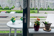 plastic flowers on balcony table with real potted plants indoors