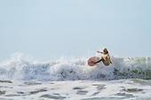 Surf Lessons, El Salvador (essay)